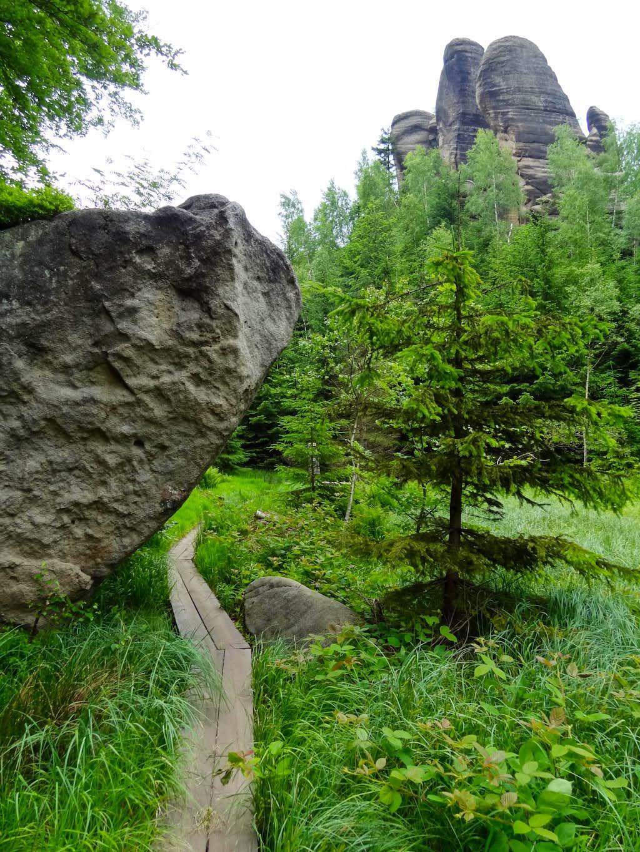 Peat bog in Skalní divadlo