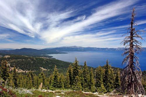 Tahoe with Cedar