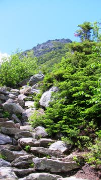 Tuckerman Trail Steepens