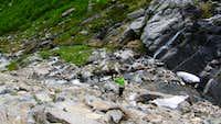 Ravine steep Nikki
