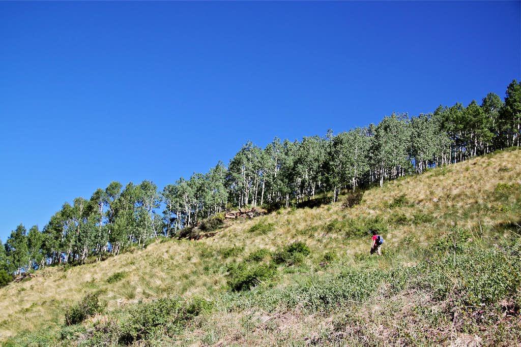 Sheridan Crosscut trail