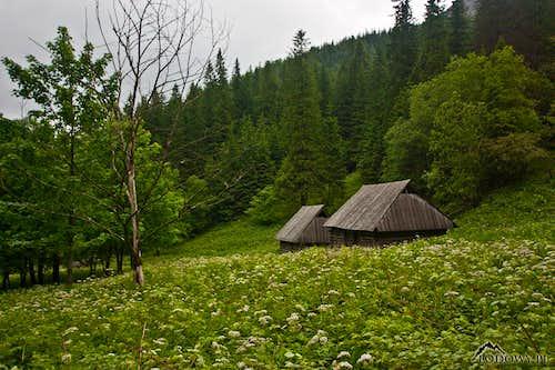 Carpathian Heritage: Wooden Huts