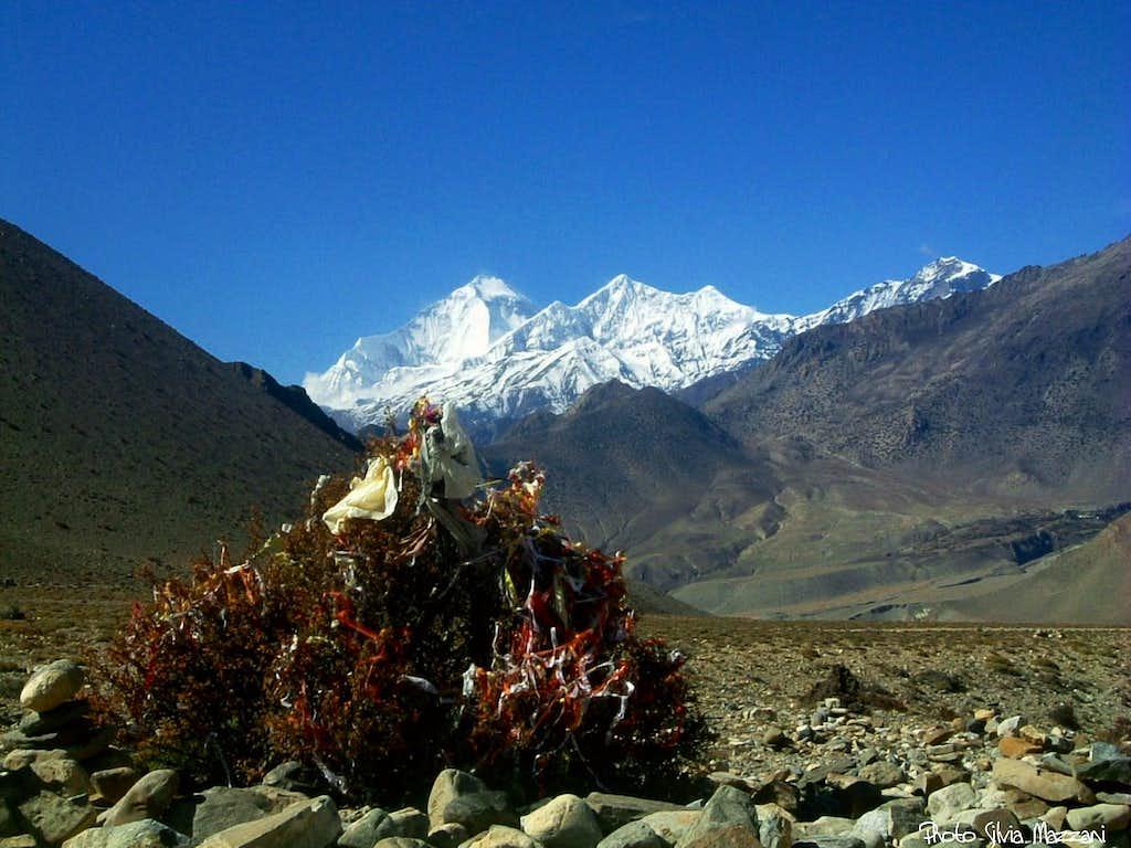 Annapurna trail  - Dhaulagiri and Tukche seen from lower Kali Gandaki