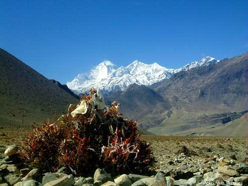Dhaulagiri and Tukche seen from lower Kali Gandaki