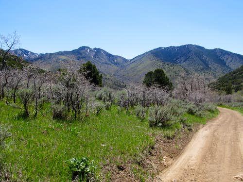 Southern Canyon Range Peaks