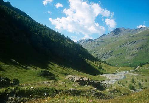 Ripa high valley. July 2002