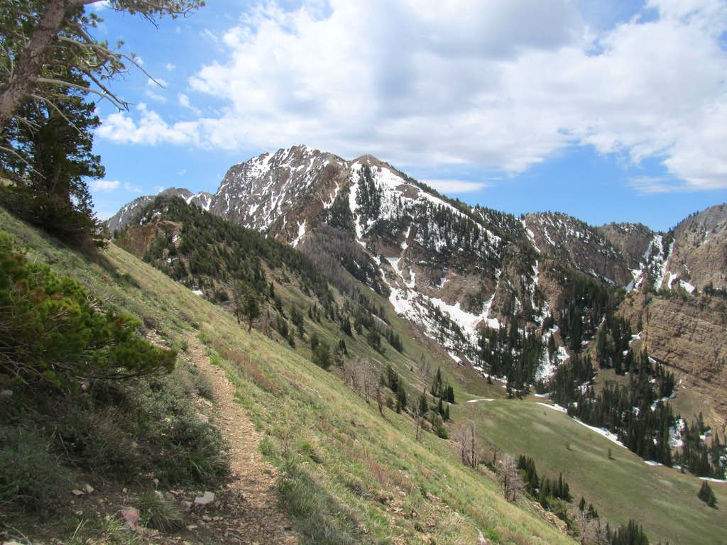 Deseret from Pocketts Fork Route