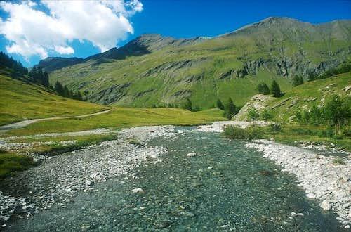 Ripa river. July 2002