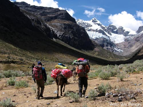 """Arrieros"" on the trail to Maparaju Base camp"
