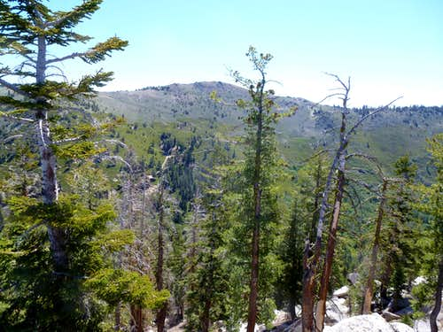 View east to Snow Valley Peak 9,214\'