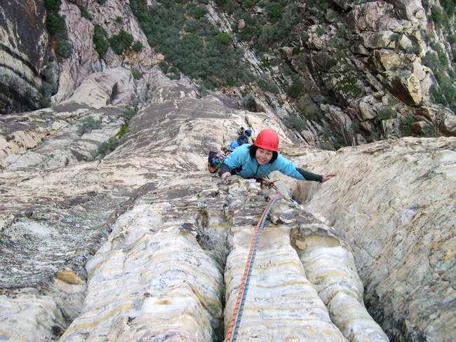 Ginger Cracks