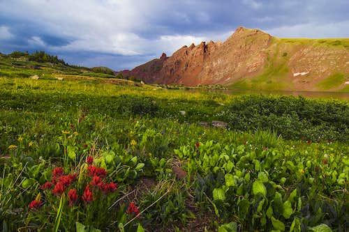 Elk Mountains of Colorado