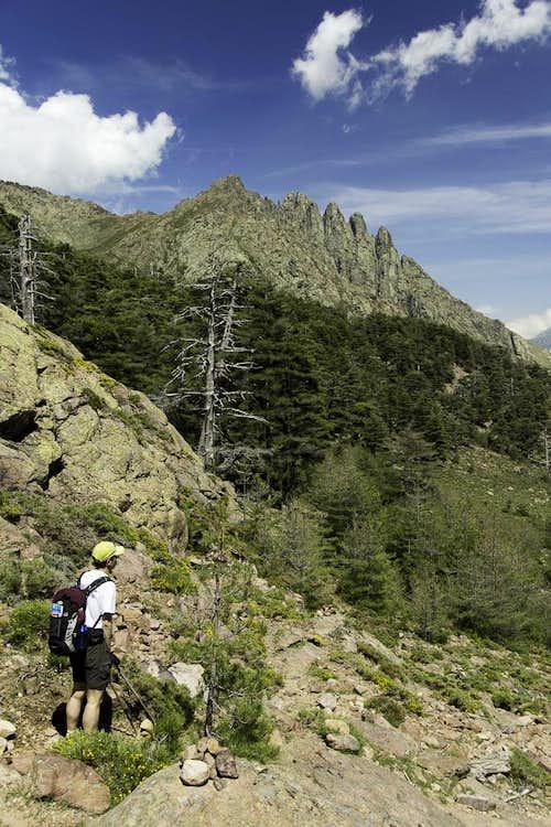 Monte Albanu