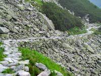 Amazing trail (side walk)