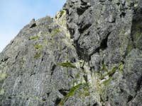 Part of Orla Perc