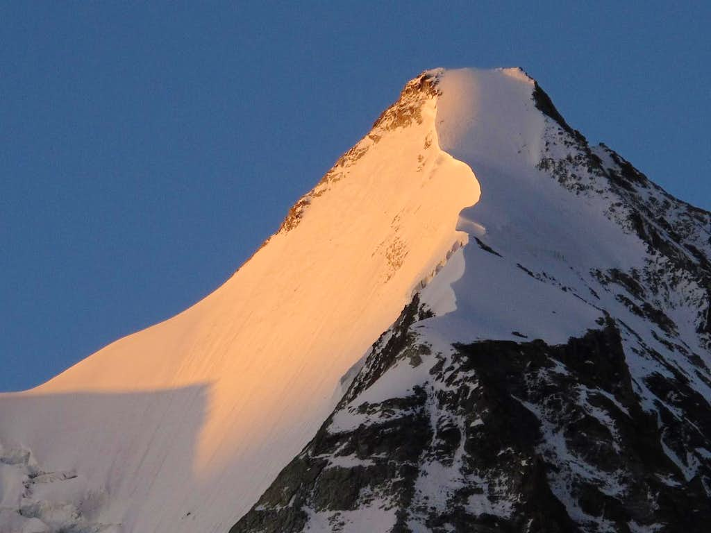 The ice wall (north face) of Obergabelhorn in sunrise glow