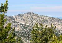 Peak 8525 from Peak 8428 in the Elkhorns