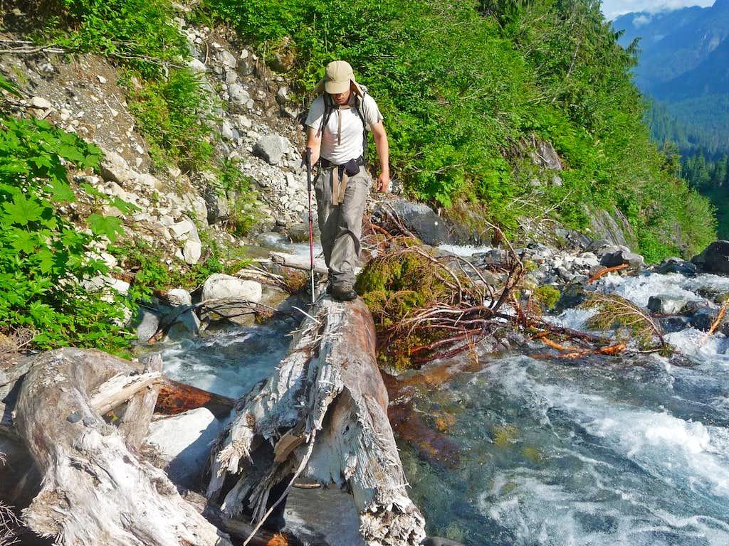 Gimpilator crossing a Log