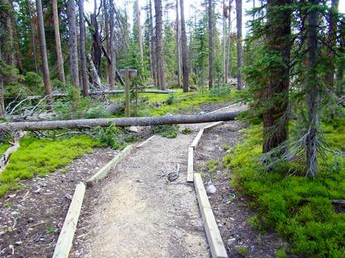 Trail Hurdles