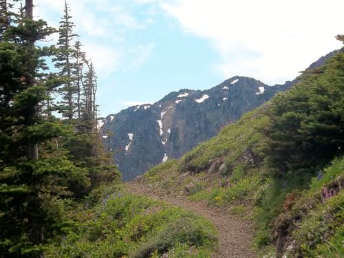At the pass between Welch Peaks and Mount Townsend