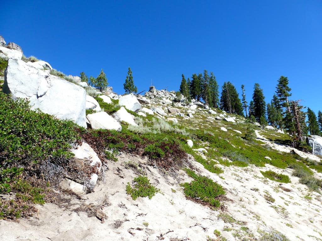 Final sandy, brushy slope up to Peak 8208