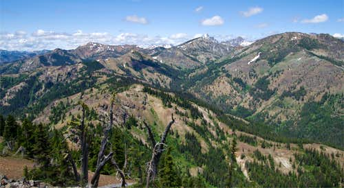 Miller View