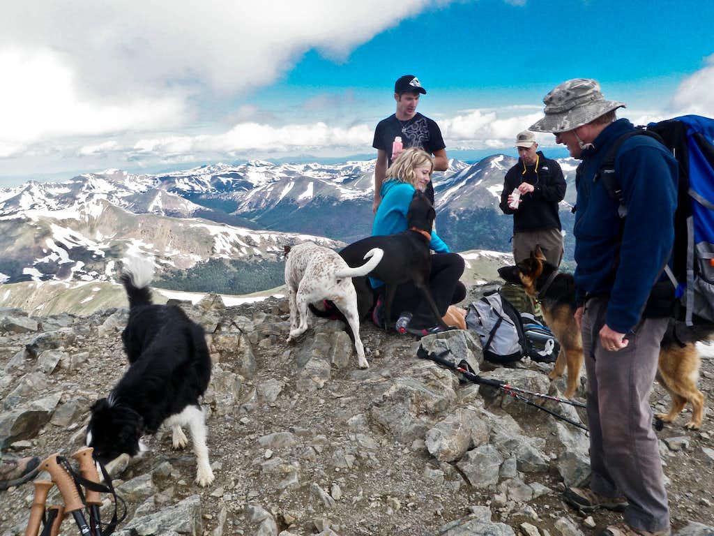 Summit Full of Dogs