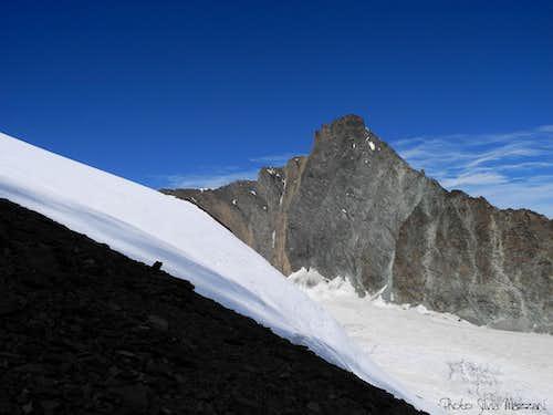 Grivola bella and Trajo Glacier