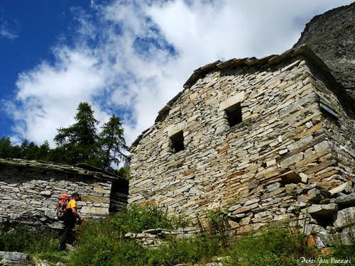 Ancient alp on the way to Vittorio Sella Hut - PNGP