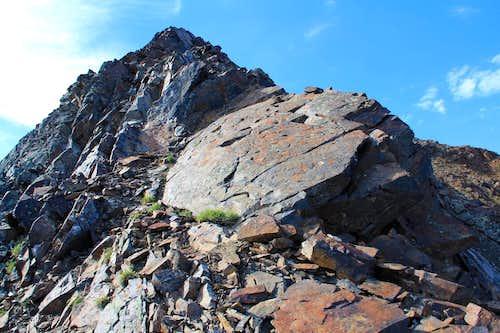 Terrain on Mt. Superiors north aspect.