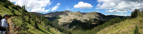 Panorama at tree  line