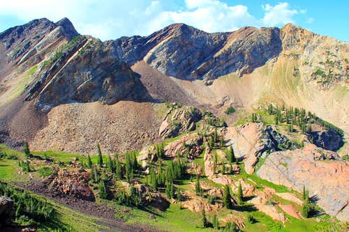 Upper Blanche Fork and the Cottonwood Ridge.