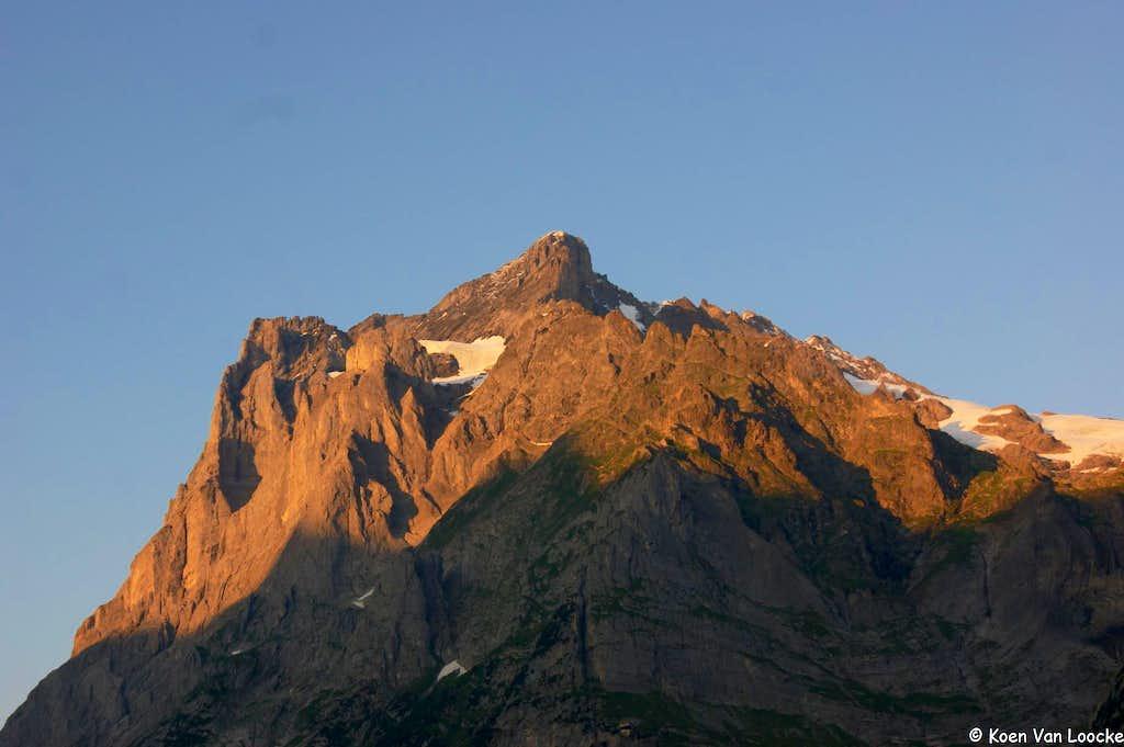 Wetterhorn at sunset