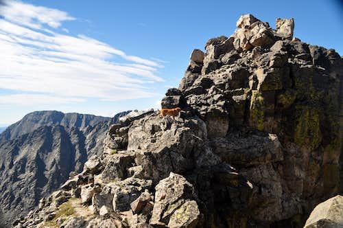 The summit tower of Shoshoni Peak
