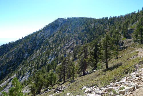 San Bernardino East Peak – My First Overnight Trip