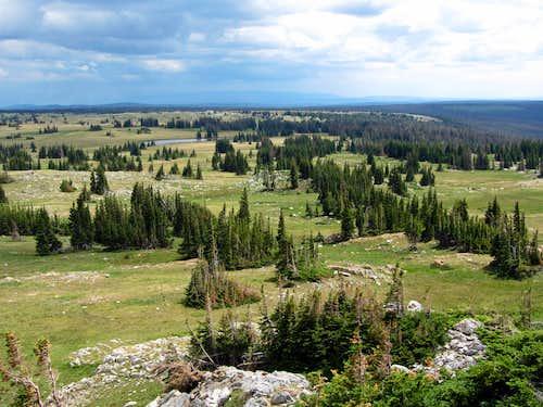 Open Wyoming