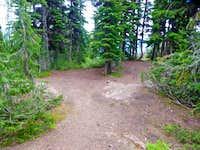 Camp Spot near Crater Lake