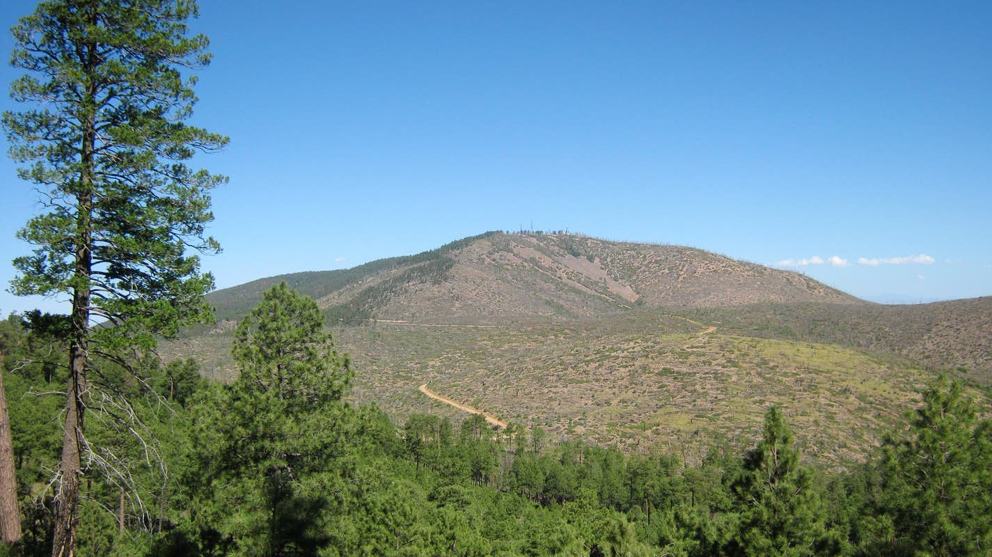 Gallinas Peak