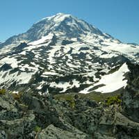 Rainier from First Mother Mountain