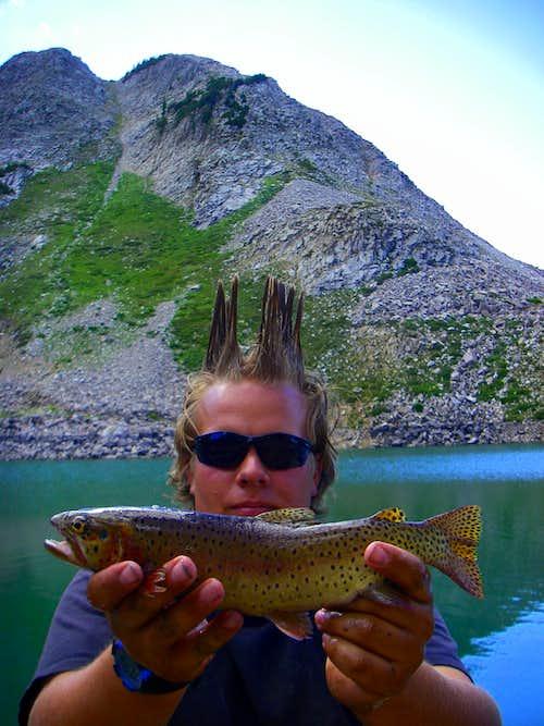 White Pine Lake Fish
