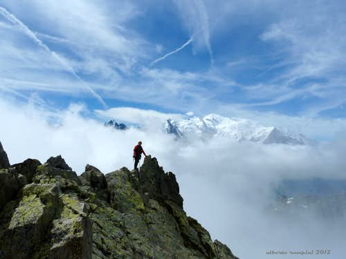 Mont Blanc group seen from  the summit of Aiguille de l\'Index