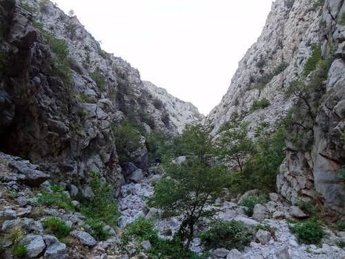 Wild river bed of Mala Paklenica