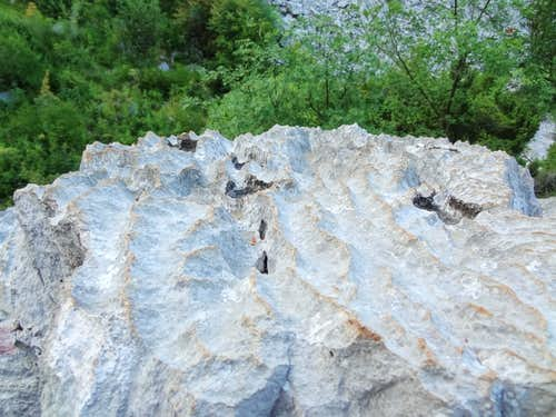 The limestone is very sharply eroded. Old clothes recommended for Mala Paklenica's scrambles !