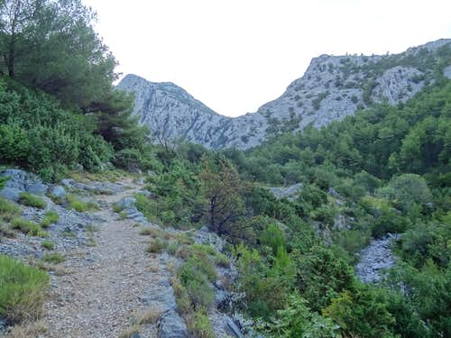 The trail during the lowest hundred meters is correct