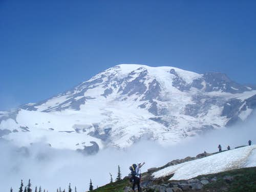 Mt Rainier on the way in