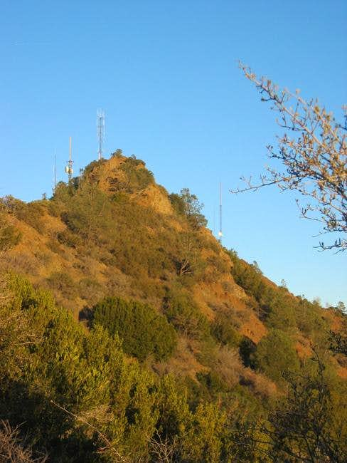 Mt. Diablo's antenna-infested...