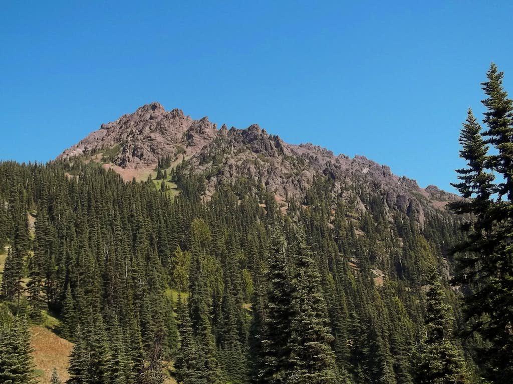 More Mount Angeles