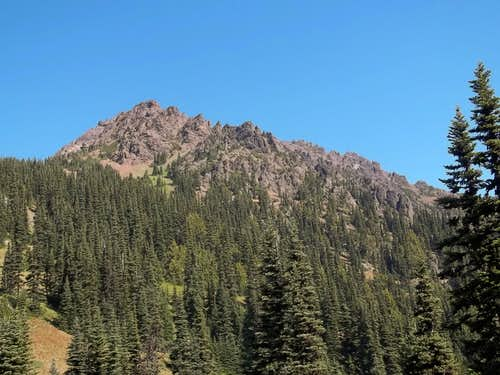 More Mount Angeles