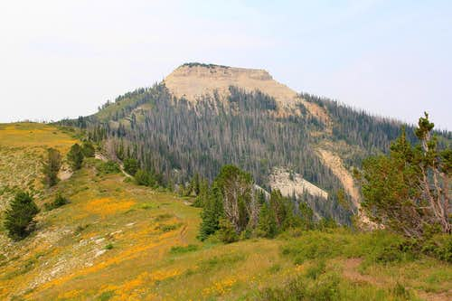 Musina Peak and the north ridge approach.