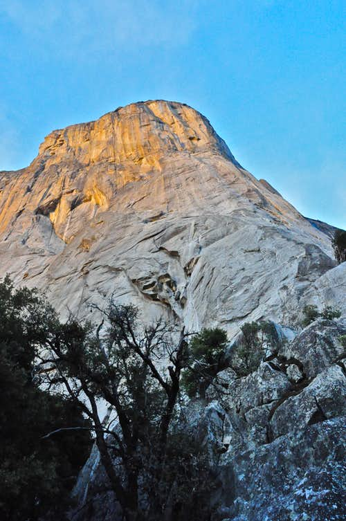 El Cap seen from the base of The Nose